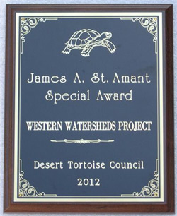 Tortoise-Council-Award